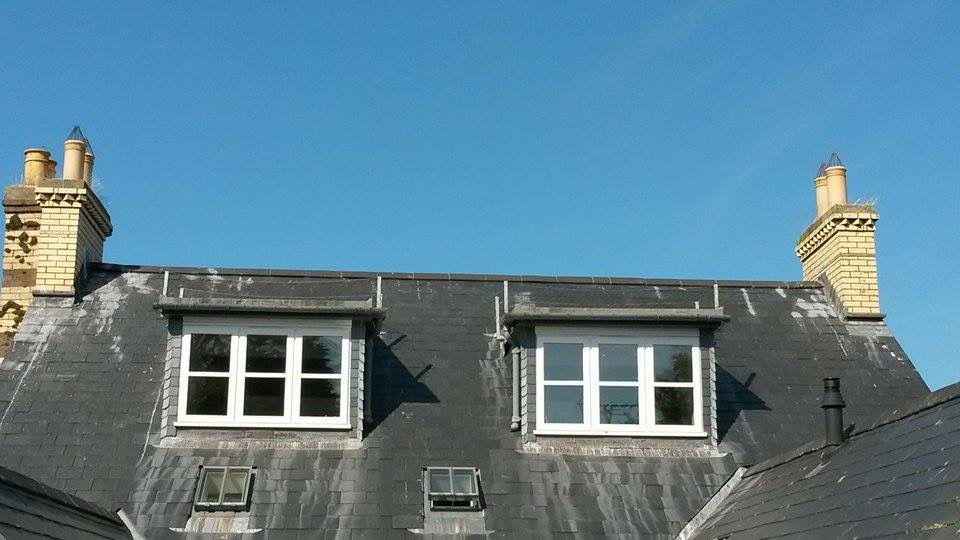 Seagull Proofing In Newport Pembrokeshire West Wales